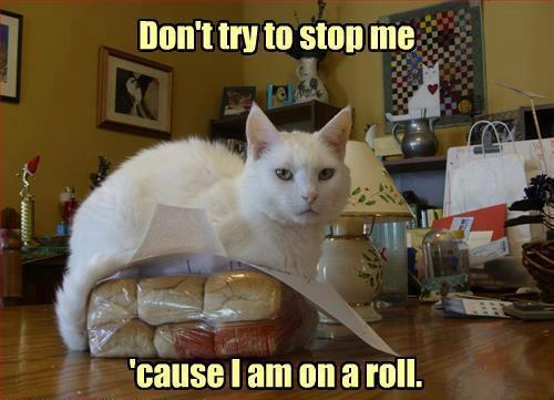 Image result for call me butter cuz i'm on a roll