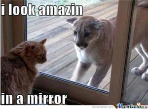 mirror_o_286755