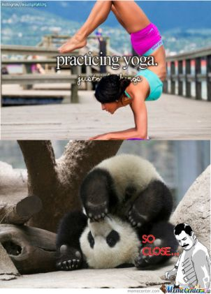 panda-can-amp-039-t-do-yoga_o_1376767