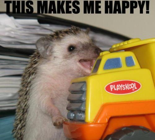 You-Make-Me-So-Happy-Meme-11