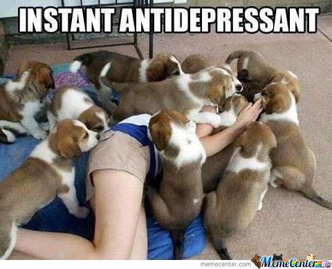 instant-antidepressant_o_1045049